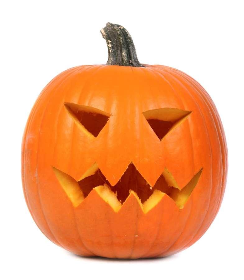Zucca halloween ferrero vivai for Immagini zucca di halloween